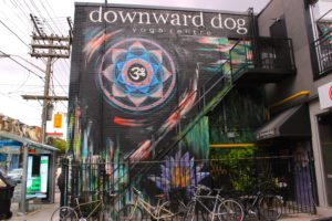 Downward Dog Mural